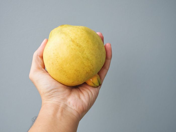 Close-up of hand holding apple against white background