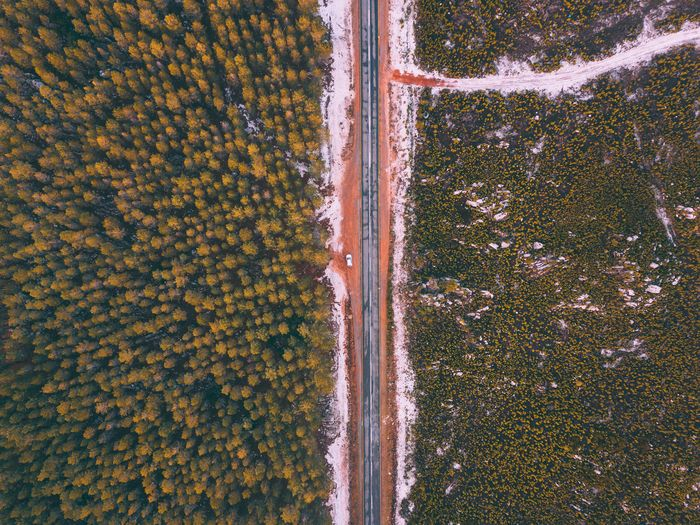 EyeEm Selects Tranquil Scene Beauty In Nature High Angle View Travel Destinations Cape Town EyeEmPaid Outdoors Landscape Aerial View Beauty In Nature Drone  Agriculture No People Tree Forest