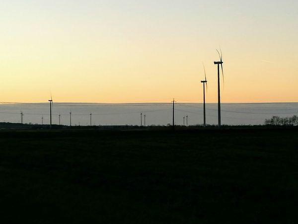 Sunset Silhouette Outdoors Nature Electricity  Horizon Over Land Horizon Twilight Twilight Sky Wind Turbines Turbine Electricity Production Power Renewable Energy Renewables Renewable Green Energy Save The World Sustainable Resources Alternative Energy Environmental Conservation Technology Landscape