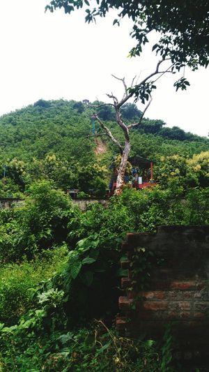 Roap Way Stn. At TaraTarini,odisha