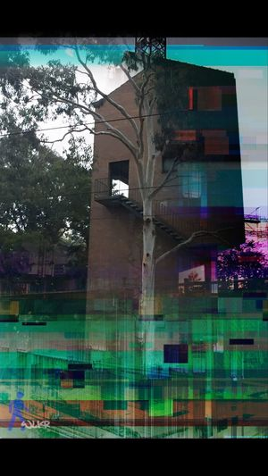 Glitch Autumn Glitch Photographic Approximation Splinters Of Reality Human Condition