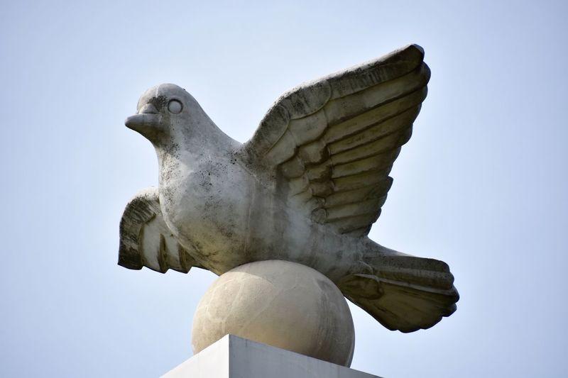 Cenotaph 慰霊碑 Pigeon Peace Pray Peacememorial Praying Worldpeace 世界平和 Monument 平和を祈る Nikon D7200 NIKKOR 18-300mm 子供の頃に平和授業で8月6日、9日、15日は忘れたら駄目だと先生に言われたなぁ。。。北九民だから特に9日については色々と授業があった No More War No War 🙅🙅🙅