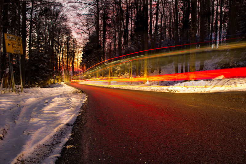 Long exposure shot of a car passing by on the road during winter and snow Zagreb Beauty In Nature City Cold Temperature Forest Illuminated Land Long Exposure Motion Nature Night No People Plant Road Scenics - Nature Snow Speed Transportation Tree Winter