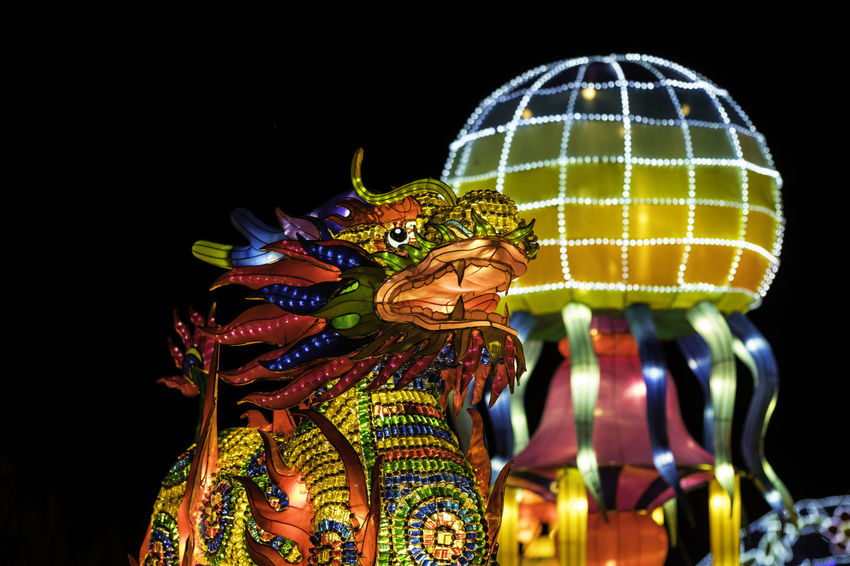Boernerbotanicalgardens China Light Festival Dragon Milwaukee Art And Craft Arts Culture And Entertainment Black Background Chinese Dragon Close-up Creativity Human Representation Illuminated Multi Colored Night No People Outdoors Sculpture Statue