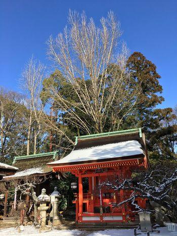 Shrine Of Japan Winter Bare Tree Blue Sky Day Kitanotenmangu Kyoto Snow