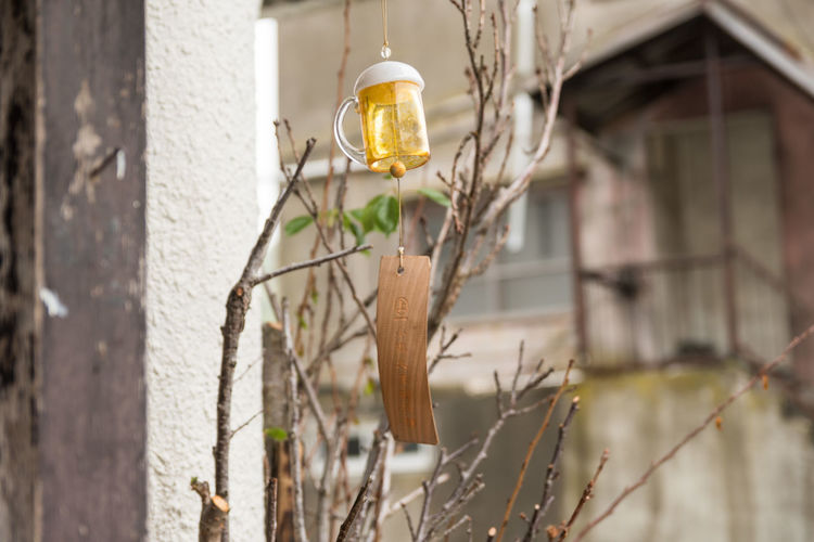 EyeEm Selects No People Hanging Close-up Outdoors Day Windchime Beer Glass