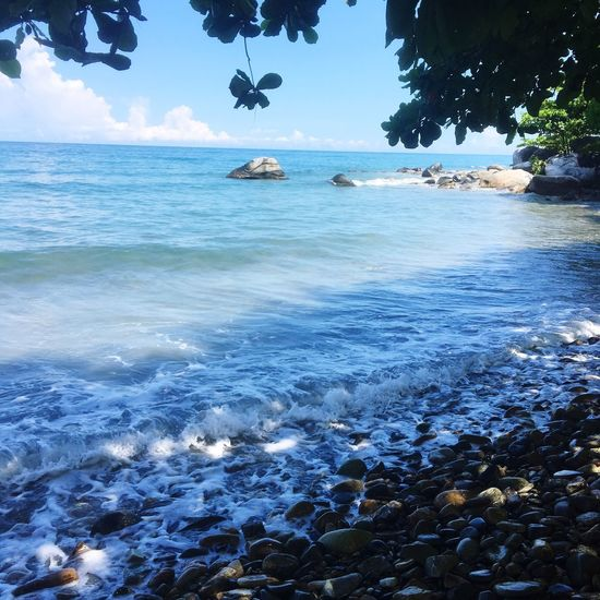 Ocean cascading against rocky shore Shore Rock Water Sea Tree Beauty In Nature Scenics - Nature Sky Land Day Idyllic Tranquility Beach Plant Tranquil Scene No People Waterfront Nature Sunlight Blue Outdoors