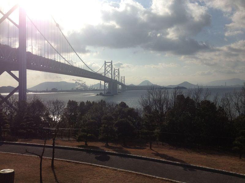 Park Japan Sunshine Connection Sky Bridge - Man Made Structure Cloud - Sky Suspension Bridge Tree