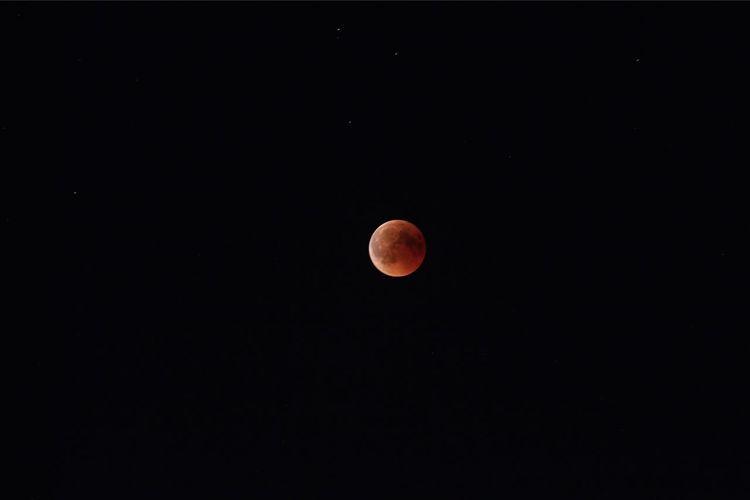 Moon Space Astronomy Sky Night Scenics - Nature
