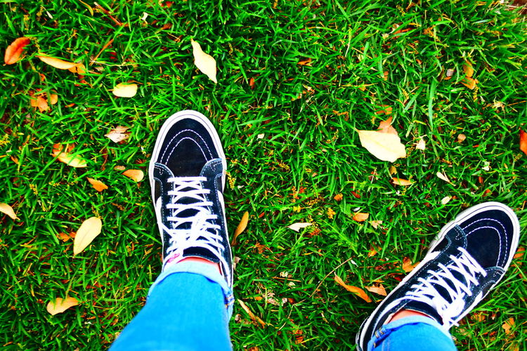 Vans Human Leg Grass Shoe Human Body Part Standing High Angle View Real People Two People Jeans Day Canvas Shoe Green Color Men Women Togetherness Outdoors Adult Nature People Asthetic Fall Colors Fall Vans High Tops Vans Off The Wall