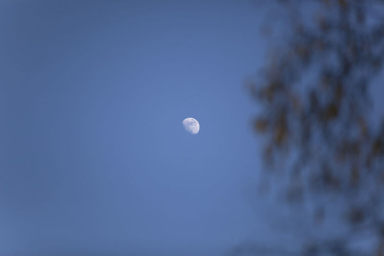 Low angle view of moon against blue sky