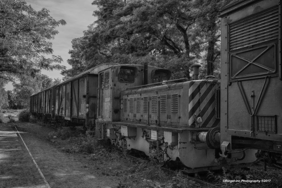 Black and white train. train - Transportation Rail Transportation Railroad Track Tree Mode Of Transport Public Transportation Day No People Outdoors Sky Locomotive Landschaftsparkduisburg Train - Vehicle Snapseed Germany🇩🇪 Fooling Around ^_^ Architecture