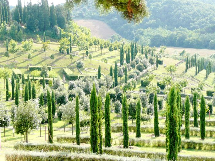 Jardin en Toscane, Italie Garden IFS