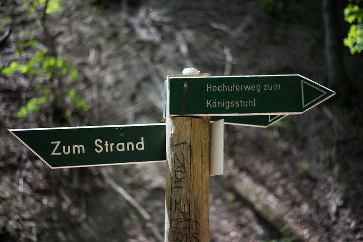 GERMANY🇩🇪DEUTSCHERLAND@ Jasmund Jasmund National Park Nature Ostsee Rügen