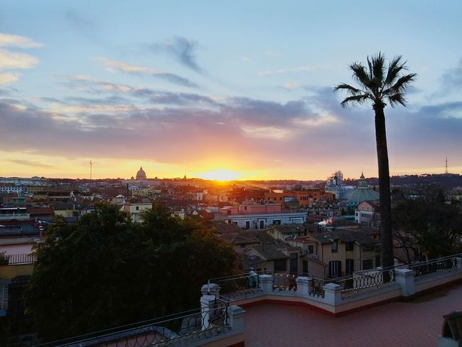 Rome Cityscape Sunset City Silhouette Palm Tree Architecture Sky Tree Travel Destinations Politics And Government Roof Outdoors Night Building Exterior No People Nature Pincio Pincioterrace Colour Your Horizn Moving Around Rome Adventures In The City The Great Outdoors - 2018 EyeEm Awards
