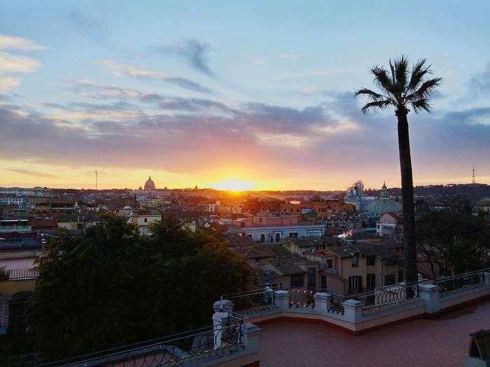 Rome Cityscape Sunset City Silhouette Palm Tree Architecture Sky Tree Travel Destinations Politics And Government Roof Outdoors Night Building Exterior No People Nature Pincio Pincioterrace Colour Your Horizn Moving Around Rome
