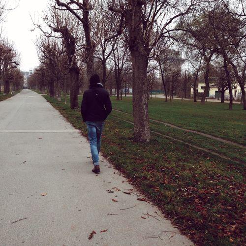 Afternoon Walking Around Park Boyfriend Winter Wintertime Vienna Augarten Hello World Mood Cold