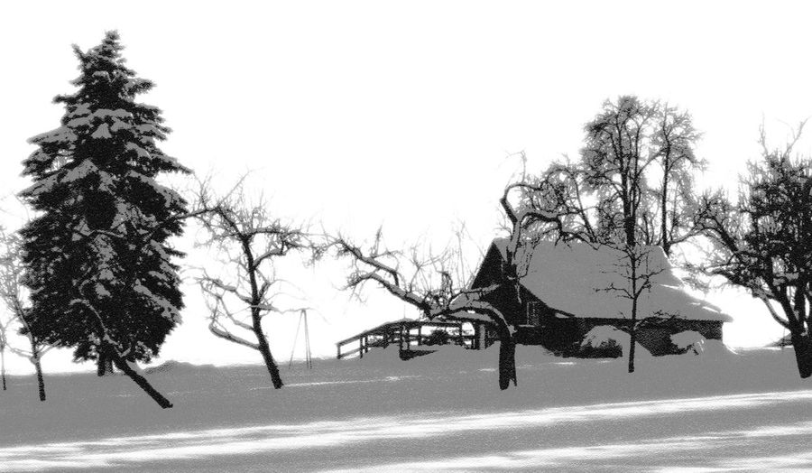 Snowcovered hut Bare Tree Black & White Black And White Photography Blackandwhite Landscape Nature Season  Snow Tranquil Scene Tranquility Tree Weather Winter
