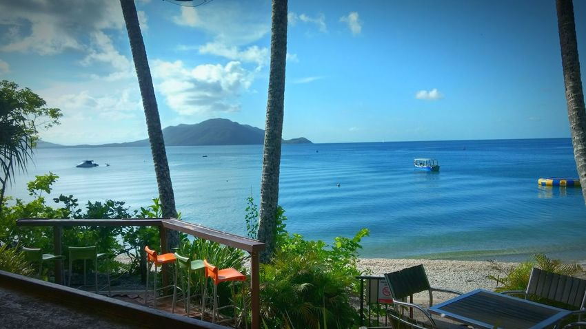 Cairns, North Queensland, Australia Beach Chill Relaxing View Seascape Island Summer Palm Tree Blue Sea And Clear Water Colors Beach Bar