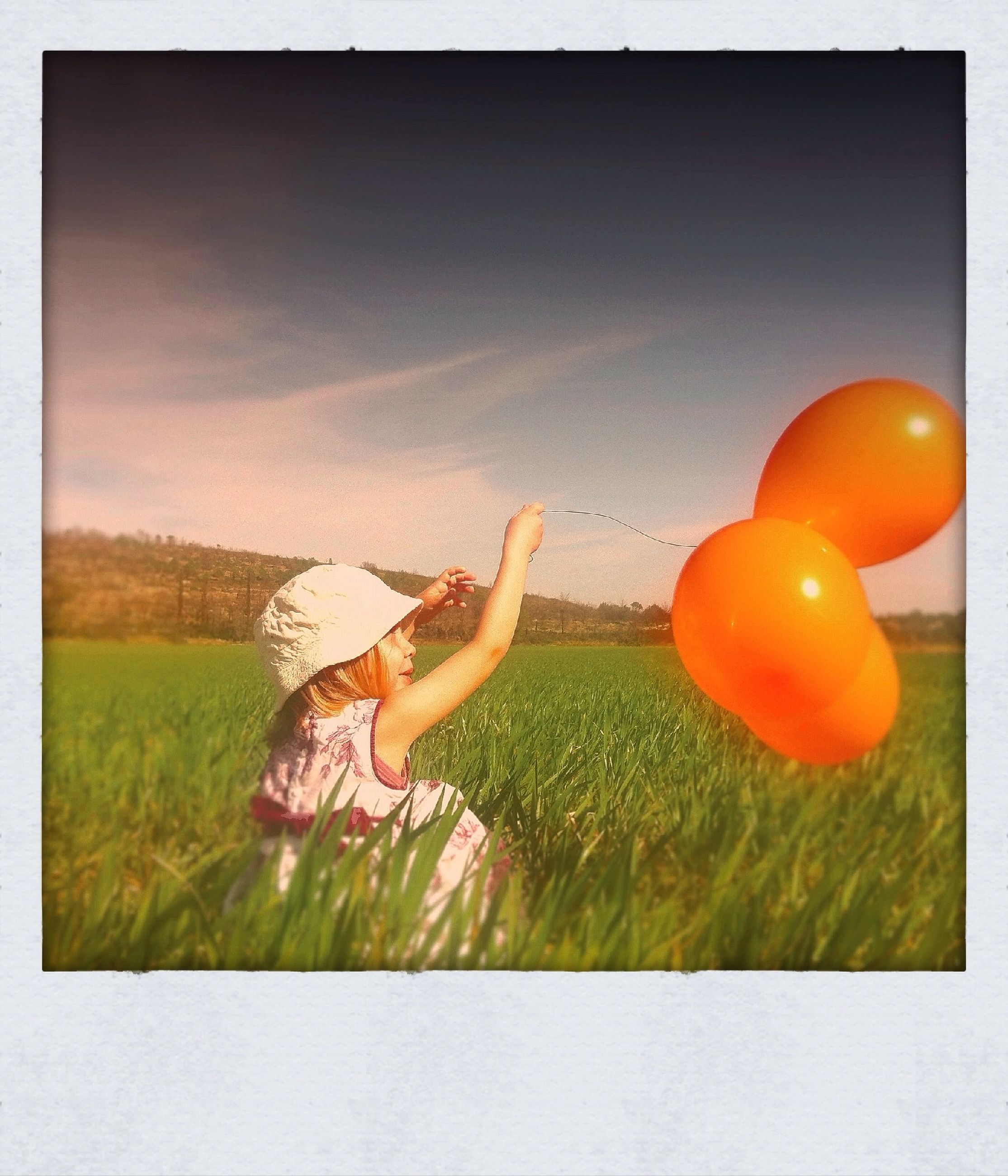 transfer print, auto post production filter, animal themes, one animal, animals in the wild, green color, orange color, wildlife, grass, field, toy, animal representation, sunset, no people, sky, full length, outdoors, nature, close-up, bird