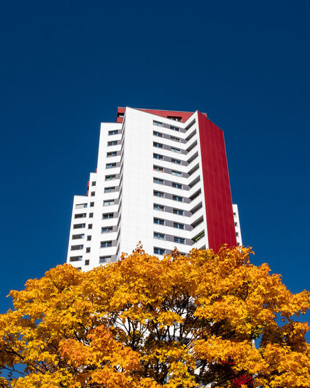 Autumncity Architecture Built Structure Building Exterior Plant Tree Outdoors No People Nature Day Ralfpollack_fotografie Fujix_berlin Sky Clear Sky Low Angle View Building Blue Autumn Change Growth City Skyscraper Autumn Mood