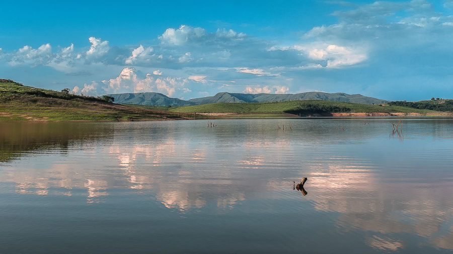 Furnas Lake Guapé/MG Minas Gerais Animal Themes Animals In The Wild Beauty In Nature Bird Cloud - Sky Day Lake Lake View Mountain Mountain Range Nature No People Outdoors Reflection Scenics Sky Swan Swimming Tranquil Scene Tranquility Water Waterfront