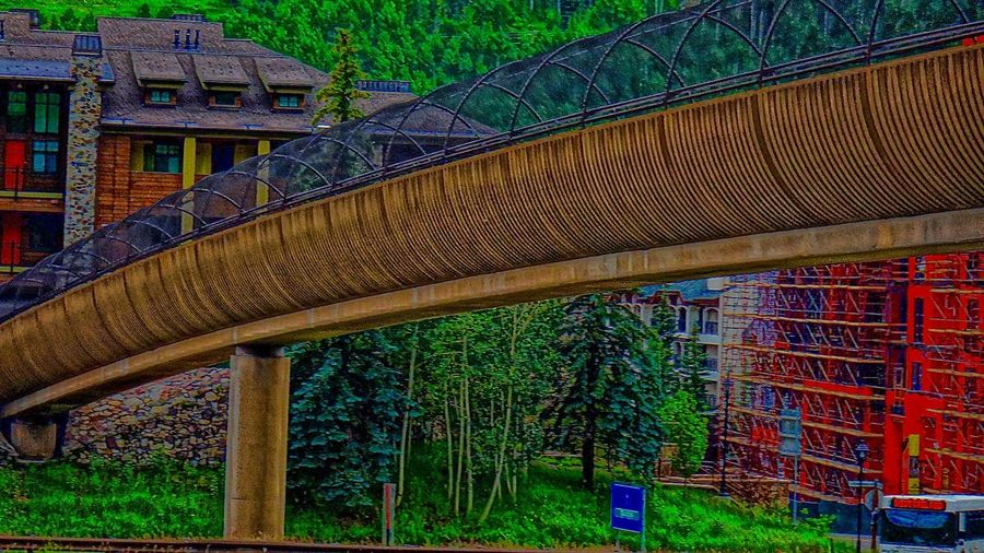 pedestrian bidge 8150 Feet Above Sea Level And Then Some... Built Structure Colorado Day Grass Green Color Growth Multi Colored Nature Outdoors Plant Summertime In Vail Tree Vail Colorado