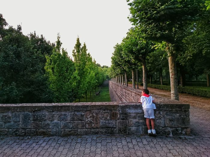 Rear view of boy standing on footpath at park