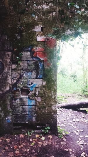 Ghost town of Bordeaux, WA Built Structure No People Outdoors Architecture Broken Down Broken Dreams Nature Taking Over Decrepid Ruins Of Our Past Ghost Town Bricks Blocks And Stones Logging Town Old Mill Town Bordeaux, WA Forgotten Places  In The Woods Graffiti EyeEm Historical Archway Ivy Covered Wall Mossy Wall Nature Taking Over