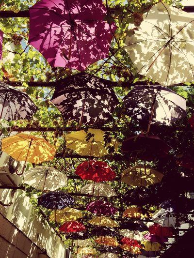 Umberella Street Check This Out Taking Photos Summer2015 Umbrellasky Umbrellastreet Umbrellas Colors Fethiye