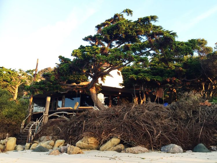 Architecture Beach Beach Front Building Exterior Built Structure Day Growth House Hut Los Angeles, California Nature No People Obsolete Old Paradise Private Beach Secluded  Sky Sol Sunlight Thatched Roof Tranquil Scene Tranquility Tree Vintage