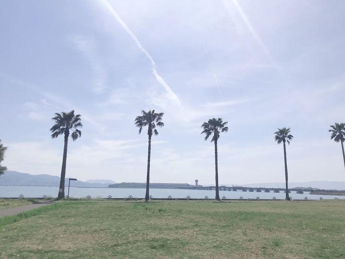 森園公園 長崎空港 Sky