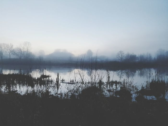 Reflection Lake Water Nature No People Tranquility Fog Outdoors Landscape Tree Scenics Beauty In Nature Sky Dawn Day Black And White Friday EyeEmNewHere