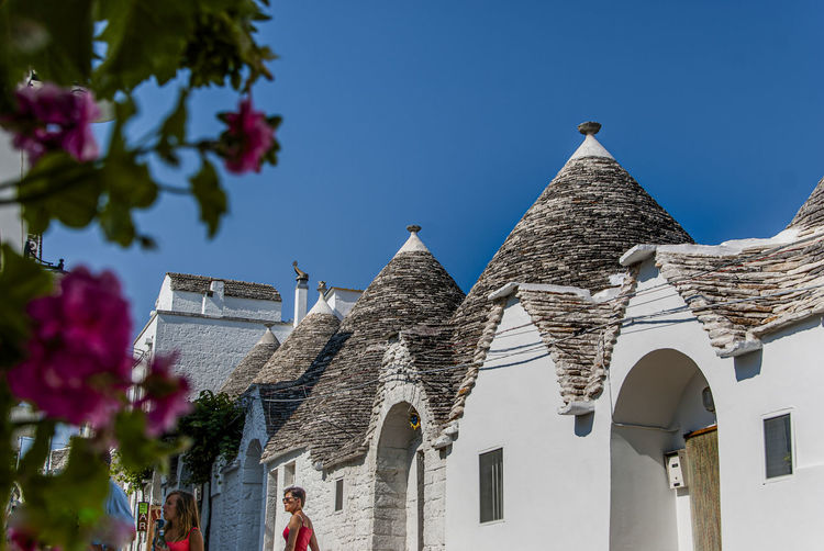 The magic of Alberobello's Trulli travel location - It was really amazing to know this particulars constructions full of charming and to ear the history about the Alberobello's Trulli in the Italy Apulia region (Puglia). The history said that the Alberobello's origins date back to the Middle Age. The settlers built the houses with stone and without cement and with the easiest way to demolish them in the case of an inspection by the Kingdom of Naples, thus avoiding paying taxes. Another interesting thing is the decorative pinnacles and symbols painted on many roofs of the trulli that were often used to identify the different religions of their inhabitants. Albelobelo Italia Viajes  2019 EyeEm Awards The Traveler - 2019 EyeEm Awards The Architect - 2019 EyeEm Awards The Photojournalist - 2019 EyeEm Awards The Street Photographer - 2019 EyeEm Awards Italy EyeEm Gallery EyeEm Best Shots Eyeem4photography Built Structure Building Exterior Architecture Building Sky Nature Plant Low Angle View Clear Sky Day Flower Flowering Plant Place Of Worship Religion Tree Belief The Past History Outdoors No People