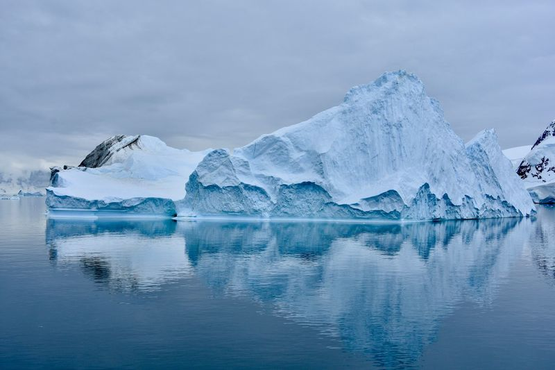 Antarctic Antarctic Peninsula Antarctica Glacier Glaciers Ice Iceberg Ocean Polar Climate Reflections Reflections In The Water Snow Winter Wonderland
