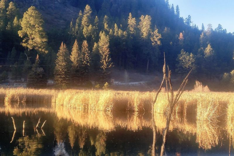 Backgrounds Full Frame No People Day Sky Water Tree Nature Freshness Spider Web Reflections In The Water Reflected On Water Mirror Reflection Reflection Lake Landscape Outdoors Gold Colored Textured  Mountains Rugged Beauty Tree Area Winter Mountain Range Rural Scene EyeEm Ready   The Great Outdoors - 2018 EyeEm Awards