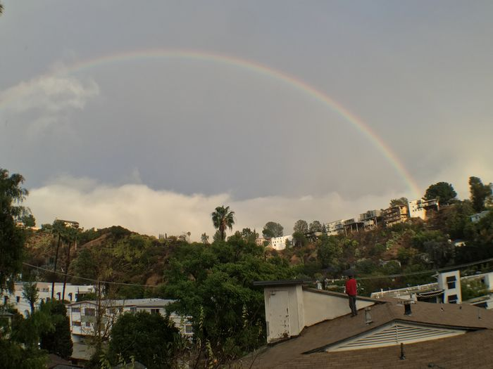 Rooftop Singing In The Rain Los Ángeles Storm Palm Trees Palm Tree Cliff Edge California Canyon Rain Rainstorm Umbrella Rainbow Double Rainbow Architecture Sky Built Structure Building Exterior Cloud - Sky Tree Mountain Nature Day Outdoors Beauty In Nature Real People Scenics City