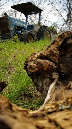 Grow thru what you go thru! Tractor Ford Tractor Focus On Foreground The Week on EyeEm From Where I Stand Thru The Fence Beauty In Nature Country Life Rural Scenes Tree Sky Grass Farmland Countryside Grassland Tranquil Scene Green Bare Tree Mid Distance