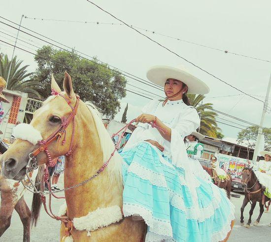 Caballos 🐎🐎👢 EyeEm Animales Fotography Fotografia Sigueme Y Te Sigo:) Followshoutoutlikecomment