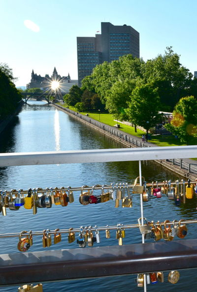 Architecture Bridge - Man Made Structure Building Exterior Built Structure Chateau Laurier Hotel City City Life Corktown Footbridge Office Building Outdoors Padlocks On Bridge Rideau Canal River Sky Skyscraper Sun Beams Sunbeam Tall - High Travel Destinations Tree Water Waterfront