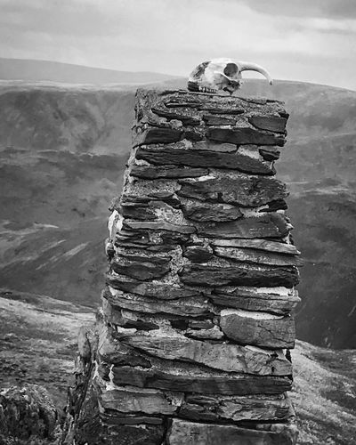 Stack Nature Environment Lake District Lake District National Park Skull Stone Rock Mountain Rock - Object