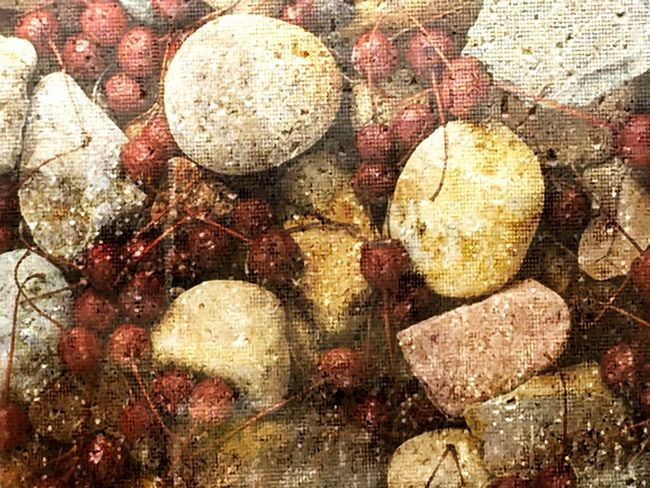 Crabapple Rock Medley through Rain Soaked Window Screen Composite Photo Merge