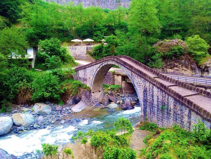Karadeniz Taşköprü Naturel Doğa