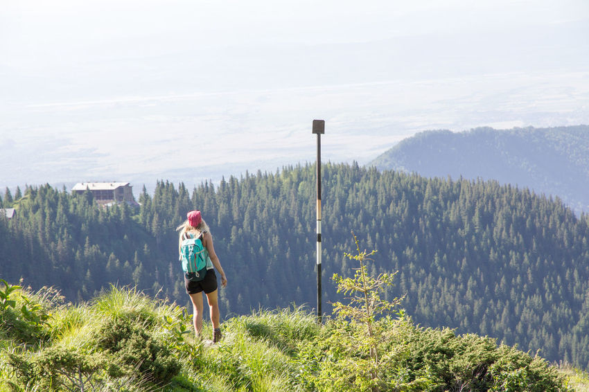Peak Negoiu, Transylvania Adult Adults Only Adventure Backpack Beauty In Nature Day Forest Full Length Grass Hiking Leisure Activity Lifestyles Mountain Nature One Person One Woman Only Only Women Outdoors Real People Rear View Scenics Standing Tree Walking Women
