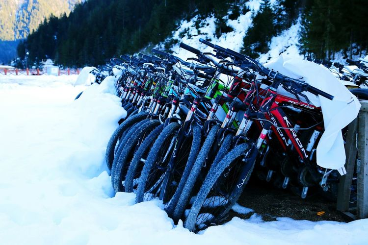 Trabzon Uzungöl Bikes Bisikletlerimiz Bisiklet Kar Snow