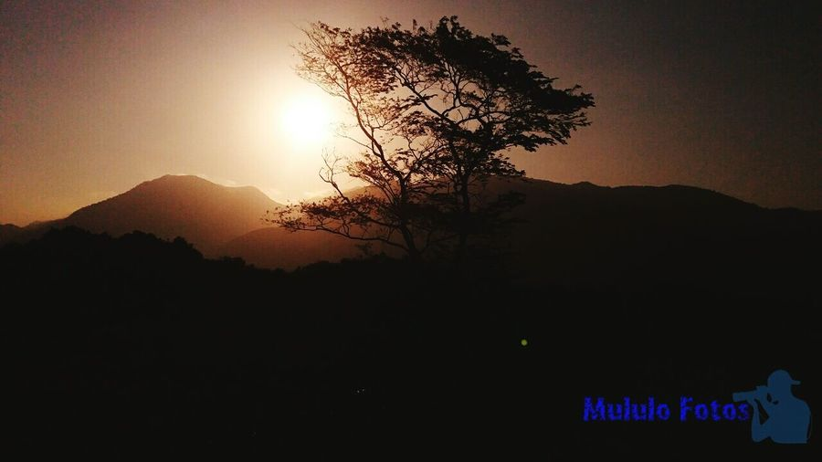 Mountain Tree Nature Sky No People Beauty In Nature