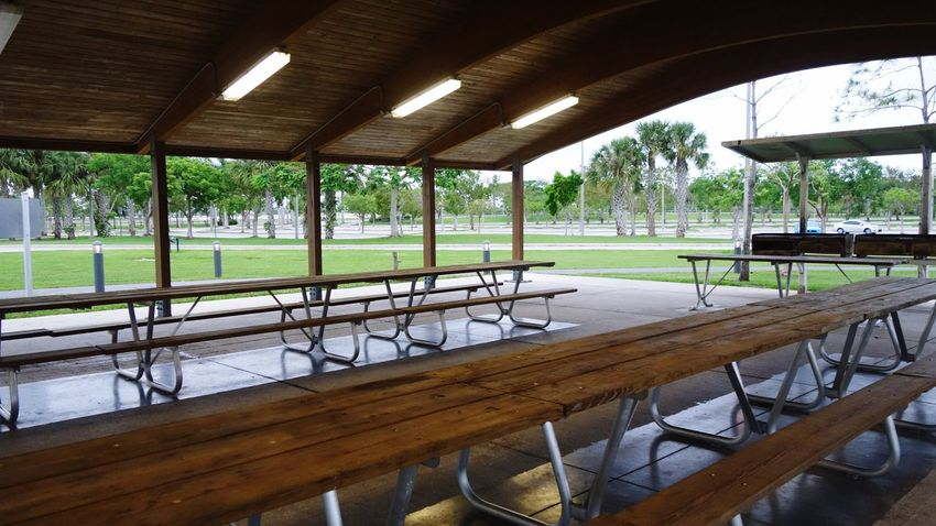 Picnic Area Picnic Area Plant Architecture Water Day Seat Indoors  Built Structure No People Table Tree Chair Empty Nature Architectural Column Window Grass Green Color Ceiling Absence