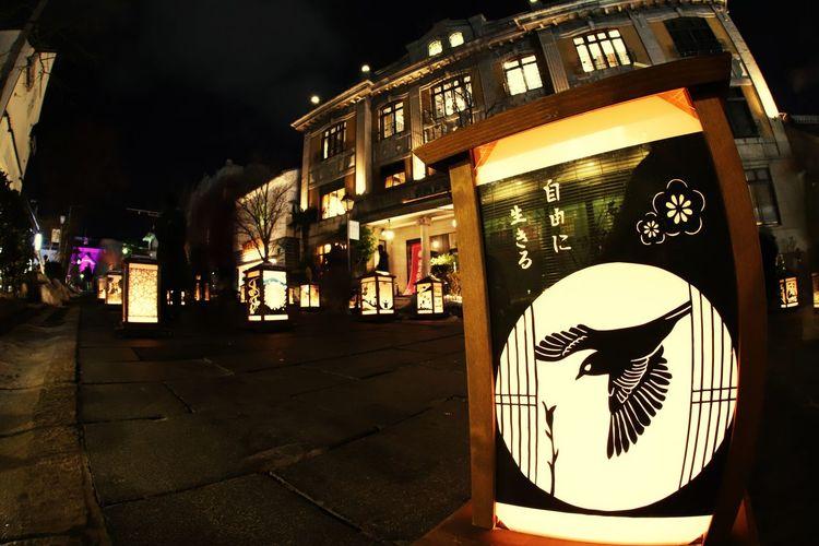長野灯明まつりが始まってます😆自由に生きる❗なんて心地良い言葉🎵 善光寺 (zenko-ji Temple) 一目惚れんず 長野灯明まつり Night Built Structure Architecture Outdoors Illuminated Building Exterior No People