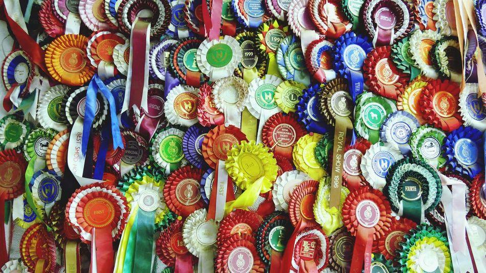 'Lifelong' Medals Rosettes First Place  Awards AWARD Collection Colour Achievements Achievement Ribbon Suffolk Punch Trust -- B
