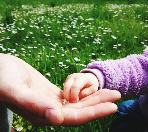 Hold my hand and never let me go .. Human Body Part People Portrait Childhood Flower Lifestyles Aventure Time Family Park Walking Around Love Babygirl
